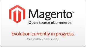 Izdelava spletnih trgovin Magento